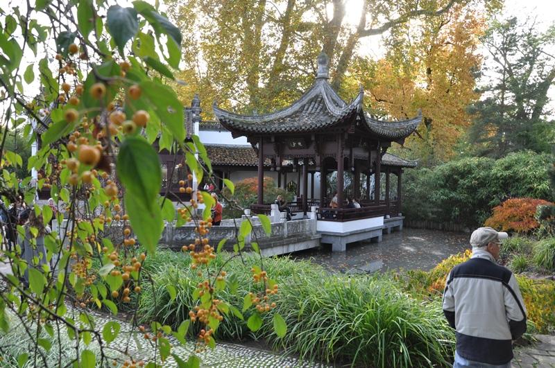 20191025_Wiedereroeffnung-chinesischer-garten-bethmannpark-konfuzius-institut-frankfurt (19)